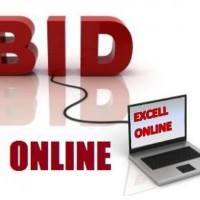Online-bidding-excell
